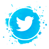 twitter-vetorizado-catavistoria-laudodemotor-redes-sociais Dúvidas de Laudo de Transferência e Laudo Cautelar